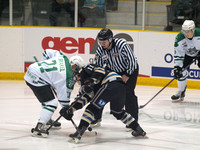 portage terriers vs swan valley stampeders oct 31